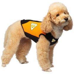 Cressi Medium-Large Dog 3mm Wetsuit 2021 - Orange - on